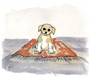 Den lilla hundvalpen på en röd matta